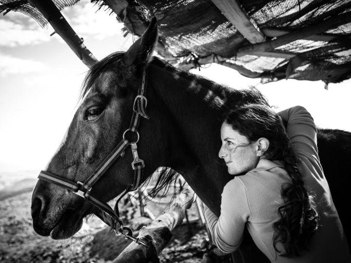 Horse-coach jerusalem by Ekaterina Bourindin