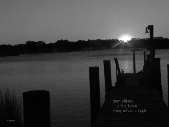 IMG_0773dawn stillness.jpg
